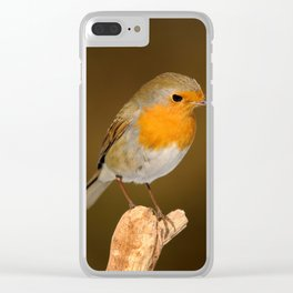 Song bird Clear iPhone Case