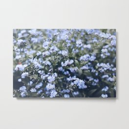 Wildflower Photography  Metal Print