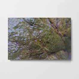 Green Algae Covered Coastal Rock Texture Metal Print
