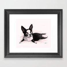 The Little Fat Boston Terrier Framed Art Print