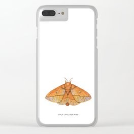 Spiny Oakworm Moth (Anisota stigma) Clear iPhone Case