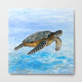 Turtle 1 Metal Print