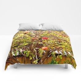 Urban Pomegranate Tree Comforters