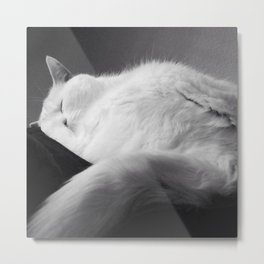 SLEEPY Cat SUNDAYS Metal Print