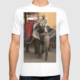 Elephants in Jaipur, India T-shirt