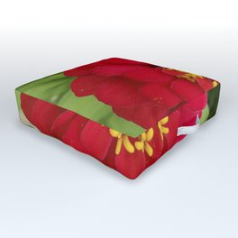 Red, RED Zinnia Outdoor Floor Cushion