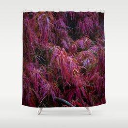 Crimson Queen Shower Curtain