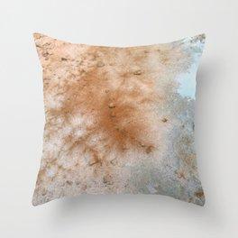 Red desert Throw Pillow