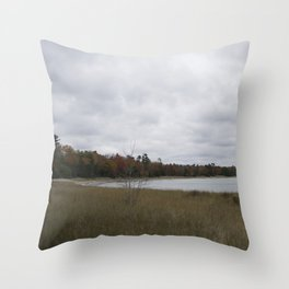 Autumn at Secret Beach Throw Pillow