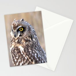 Portrait of a Short-Eared Owl Stationery Cards