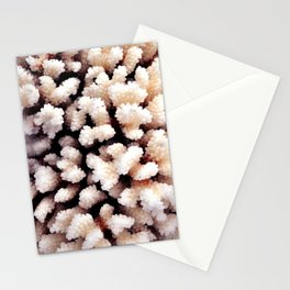 White Coral Stationery Cards