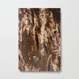 Sea Grasses Metal Print