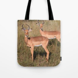 Boys Looking for Girls Tote Bag