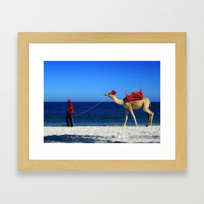 Camel Beach Framed Art Print