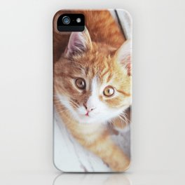 Cute cat Kristofferson iPhone Case