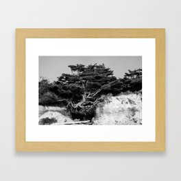 Determination Framed Art Print