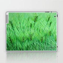 Green wheat Laptop & iPad Skin