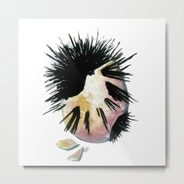 Sea Urchins Metal Print