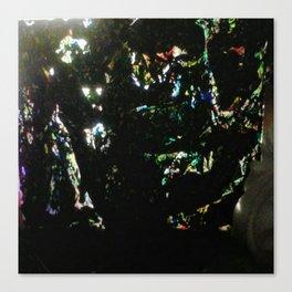 Angle de vue de nuit Canvas Print