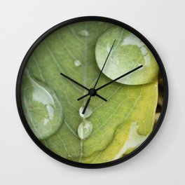 Raindrops on a green leaf Wall Clock