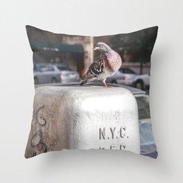 NYC Pigeon Throw Pillow
