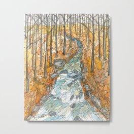 Eno River 39 Metal Print
