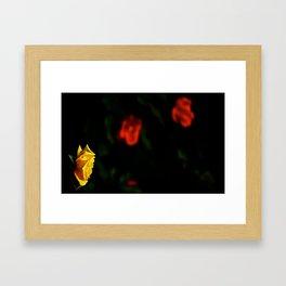 All Roses Aren't Red Framed Art Print