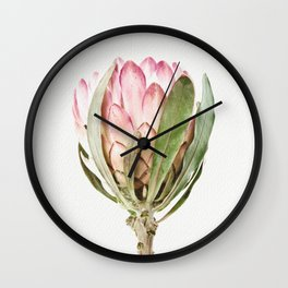 Pink Protea Flower Wall Clock