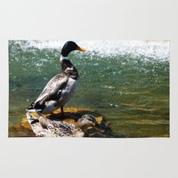 ducks Area & Throw Rugs featuring Ducks by Siriusreno