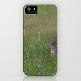 Sitting Pretty. iPhone Case