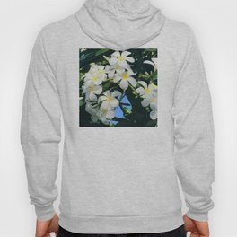 Hawaiian Tropical Plumeria Flowers With Peep of Sky Hoody