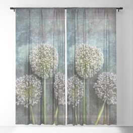 Three Allium Flowers Sheer Curtain