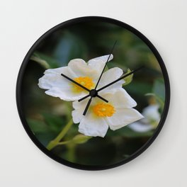 White Malva Wall Clock