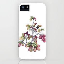 Poison Oak iPhone Case