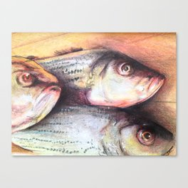 The Standards Fish Canvas Print