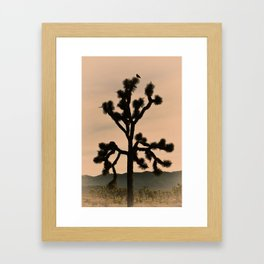 JOSHUA TREE - VINTAGE CALIFORNIA Framed Art Print