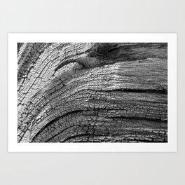Driftwood Texture, Poolbeg Beach, Dublin Art Print