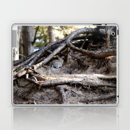 Watership Down Laptop & iPad Skin