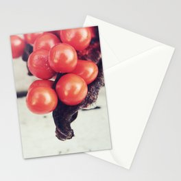 Seed Pods I Stationery Cards