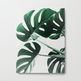 Monstera, Leaves, Plant, Green, Scandinavian, Minimal, Modern, Wall art Metal Print