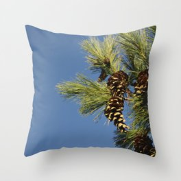 Pine cones and branches against a blue autumn sky Throw Pillow