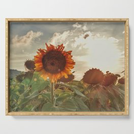 Golden Sunflower Sunsets Serving Tray