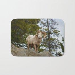 Big horn sheep in Jasper National Park   Alberta Bath Mat