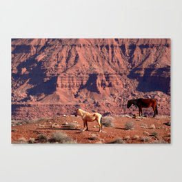 Once Upon a Western Dream Canvas Print