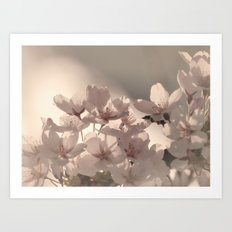 WONDERFUL SPRING Art Print