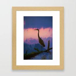 Blue Heron at Sunset Framed Art Print
