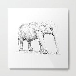Elephant black and white Metal Print