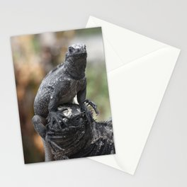 Funny animals - two marine iguanas in the Galapagos Stationery Cards