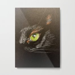 Black cat 2 Metal Print