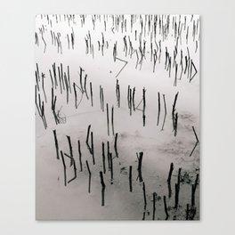 Flooded Crop Canvas Print